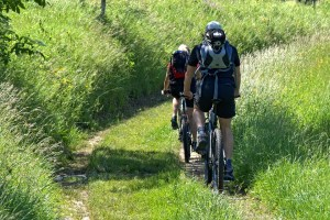 Things You Should Do In How To Ride A Mountain Bike Properly