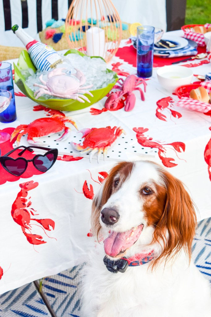 dog sitting next to seafood tablescape