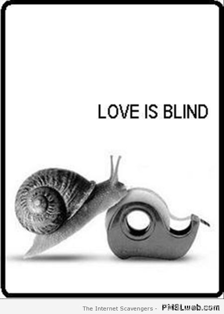 Image result for love humor