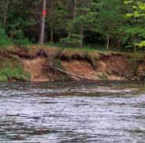 PMTU in Action – Investing in Protecting the Pere Marquette River