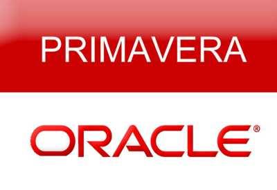 primimavera P6 Training Course 16.1
