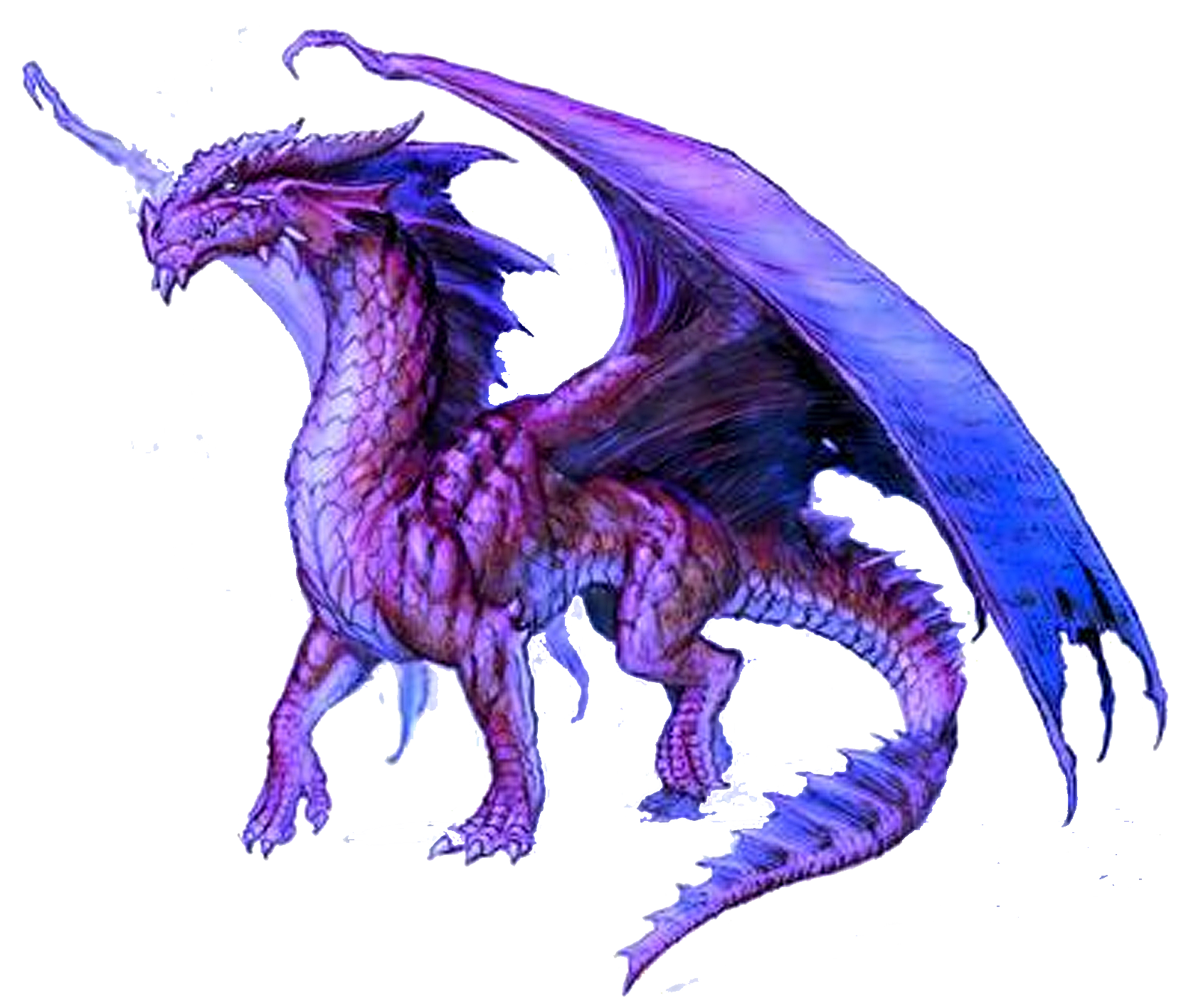 Image result for Dragon Transparent Background