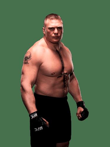 Image Result For Brock Lesnar