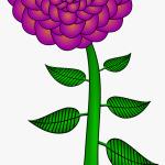 Paisley Flower Clip Arts Big Flower With Stem Clipart Hd Png Download Transparent Png Image Pngitem