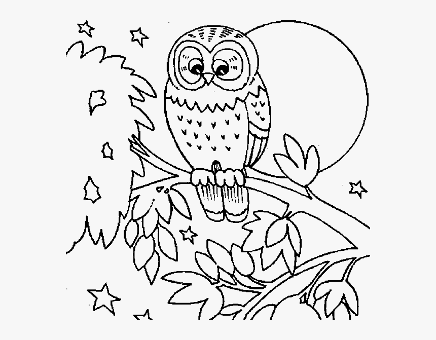 Cute Owl Coloring Pages Printable Fall Animal Coloring Pages Hd Png Download Transparent Png Image Pngitem