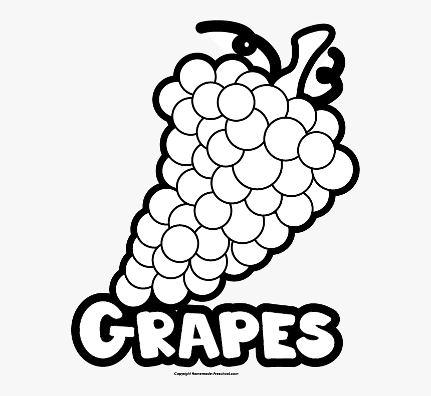 Grapes Clipart Name Grains Food Group Coloring Page Hd Png Download Transparent Png Image Pngitem
