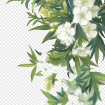 Jasmine Flower Flowers And Leaves Png Transparent Png 700x1245 8160884 Png Image Pngjoy