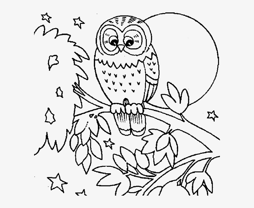 Owl Colouring Sheets Cute Owl Coloring Pages Getcoloringpages Owls Coloring Pages Printable Free Transparent Png Download Pngkey