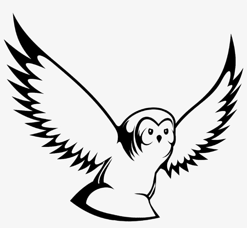 56 Foto Gambar Burung Animasi Hitam Putih Gambar Burung