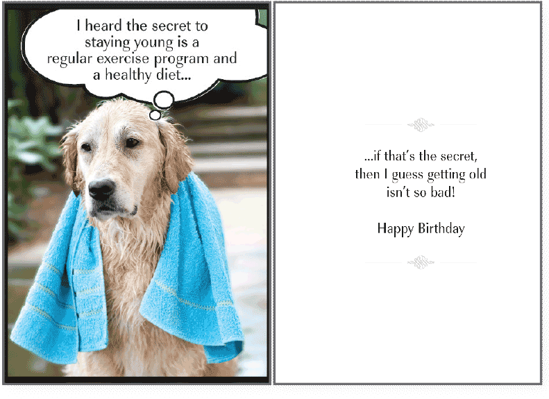 Download Secret To Staying Birthday Card Happy Birthday Dog Lover Funny Full Size Png Image Pngkit