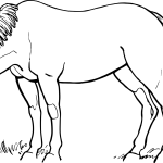 Download Horses Png Black And White Horse Drawing Black And White Full Size Png Image Pngkit