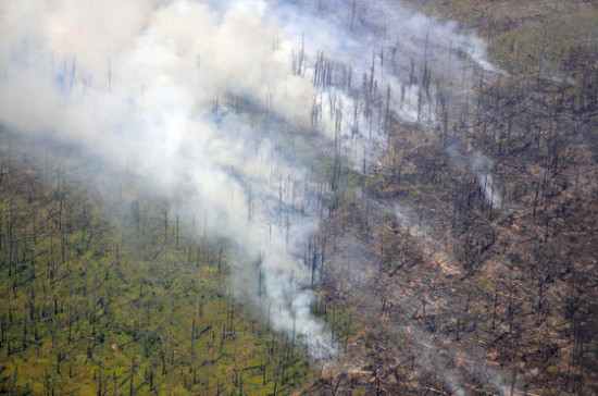 Регионы смогут самостоятельно тушить ландшафтные пожары
