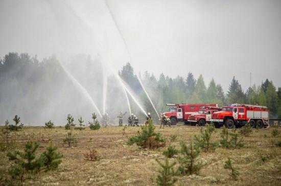 Регионы смогут сами организовывать тушение природных пожаров