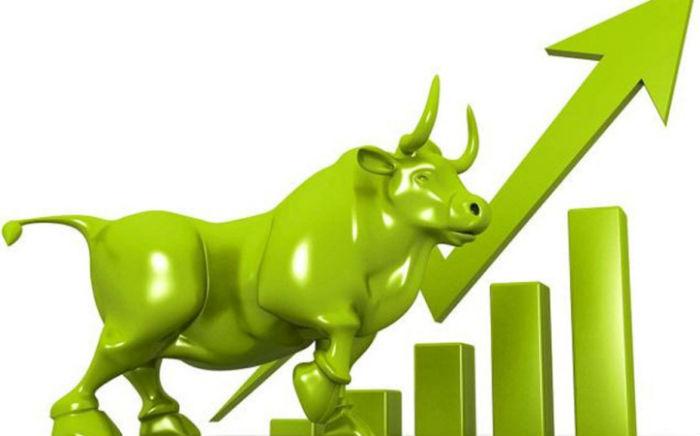 शेयर बजार थामियो : दोहोरो अङ्कले वृद्धि