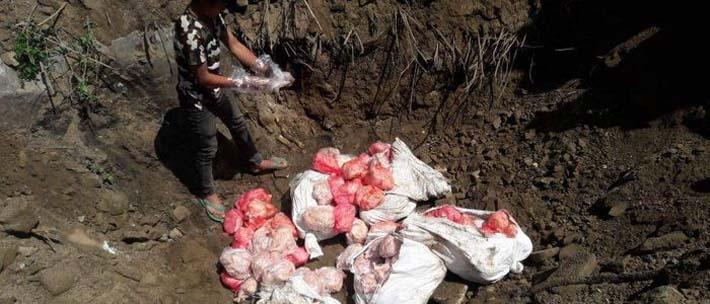 अवैध रुपमा भित्र्याइएको मासु नष्ट