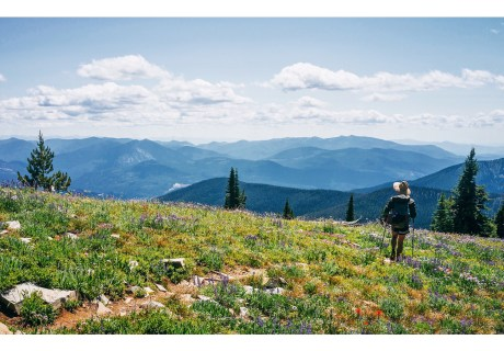 Abercrombie Mountain in the Colville NF