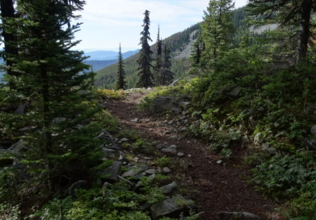 Trails in the Colville National Forest