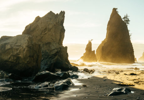 Sea stacks along the Wilderness Coast