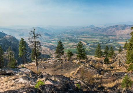 Okanogan Valley