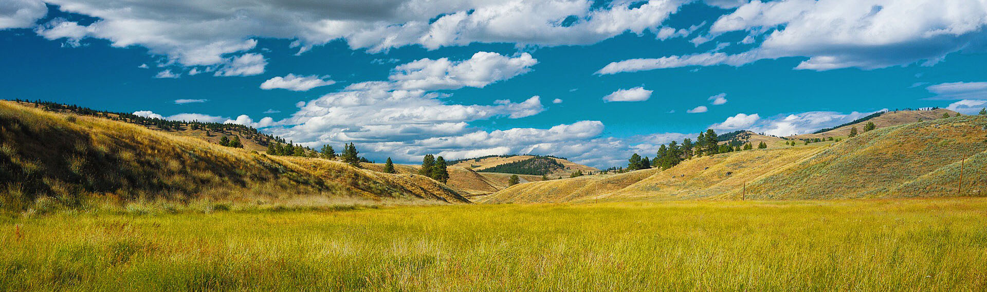 Okanogan Highlands