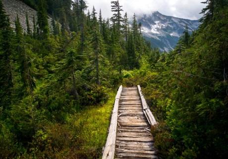 trail alerts