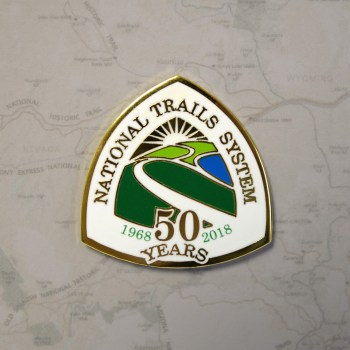 NTS 50th Pin