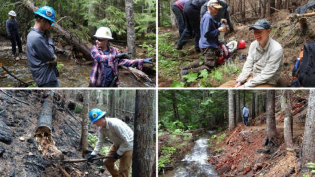 PNTA Performance Trail Crew