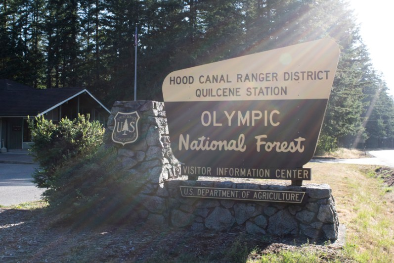 The Association's Quilcene Ranger Corps program takes middle school-age youth outside to learn about our natural resources and practice trail skills working on the Olympic National Forest.