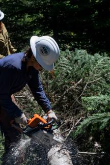 PNTA Crew Leader, Kelsey Leppek works to remove subalpine fir and other competitors to whitebark pine. Photo by Jeff Johnson, Community Outreach Coordinator at the Lands Council.