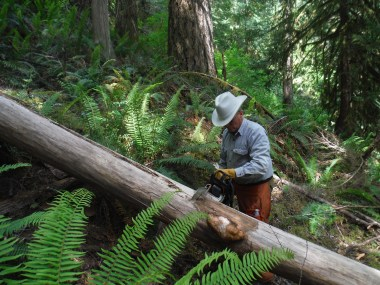 Lewis Trout first became involved with the Association in 2005, joining volunteer trail work parties.