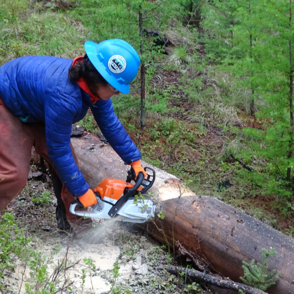 Crew leaders received training in chainsaw and crosscut bucking.