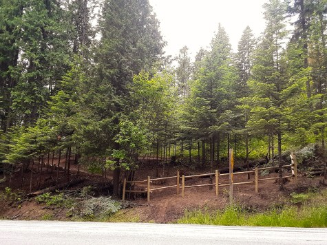 The crew built a barrier fence as a safety feature on the Lower Wolf Trail