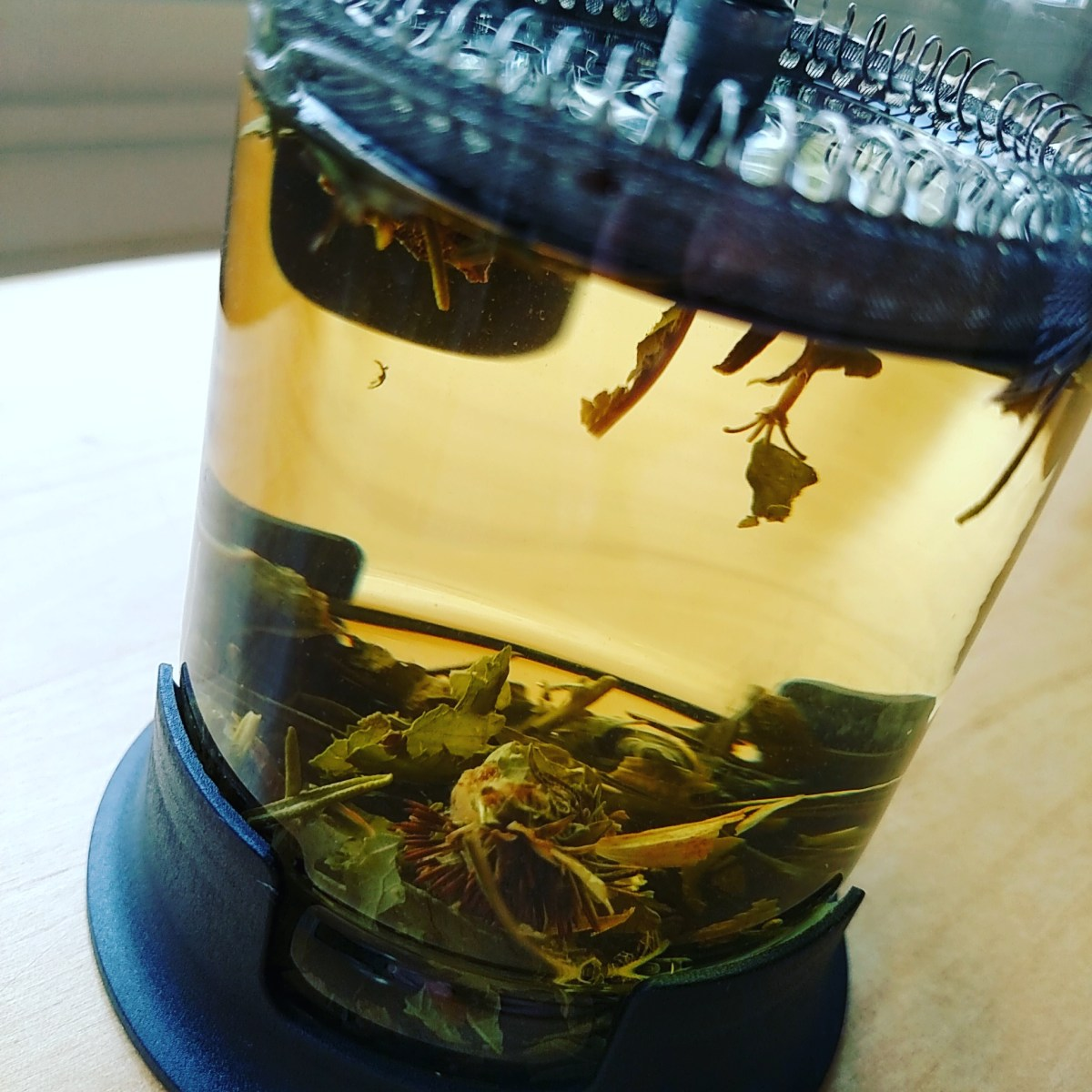 Herbal Tea Recipe: PNW 'Winter Day' Blend