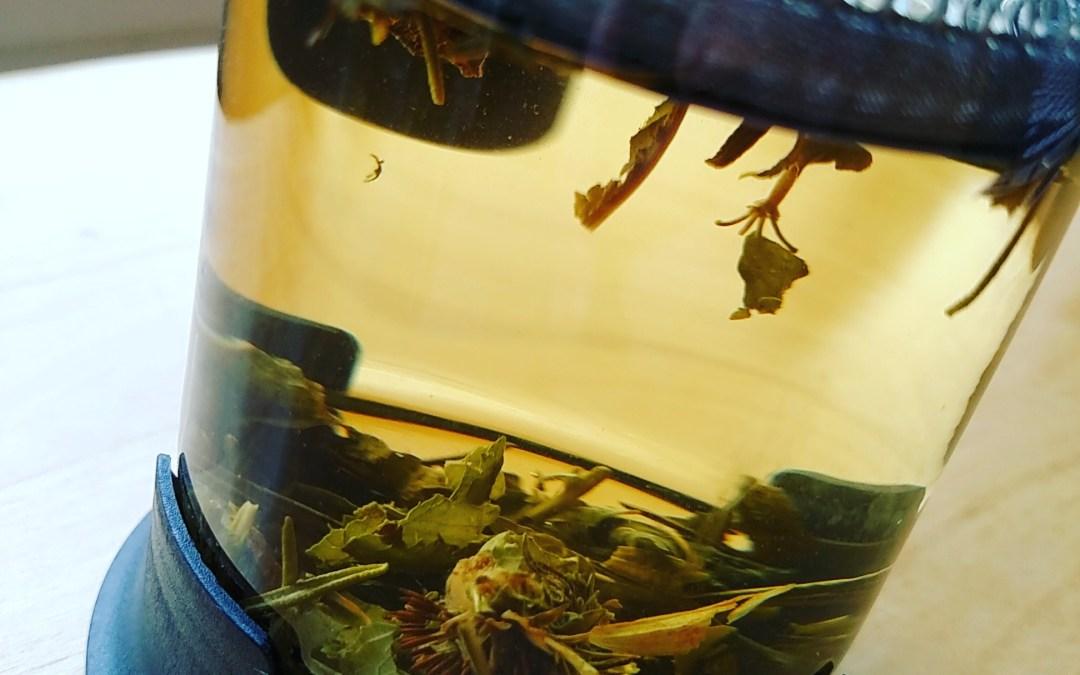 Herbal Tea Recipe: PNW 'Winter Day' Blend