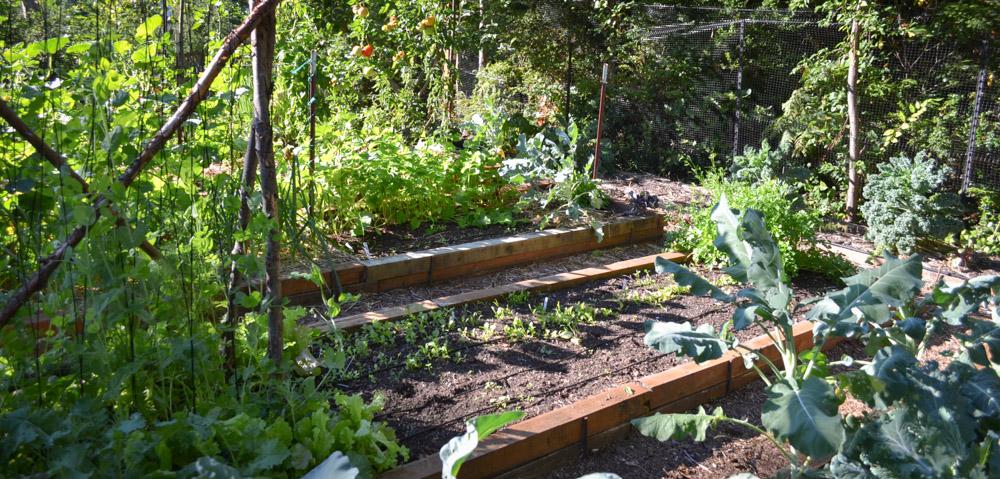 DIY Garden Planting Calendar - Hands Down the Most Time-Saving Section of My Garden Journal - PNW from Scratch_5