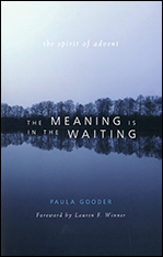 The Meaning is in the Waiting (Book) (NEW!)