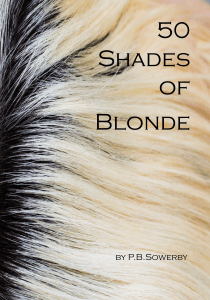 50-shades-of-blonde_a5_front_cover-done