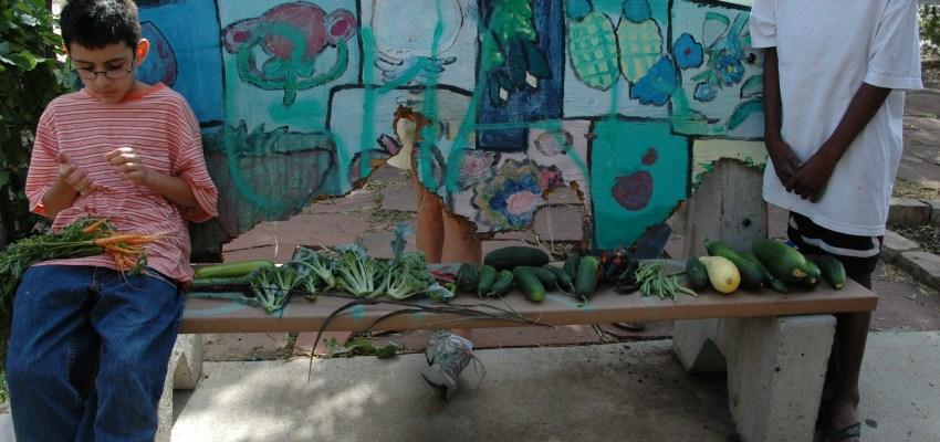 Urban Gardens Flood Denver's Food Deserts