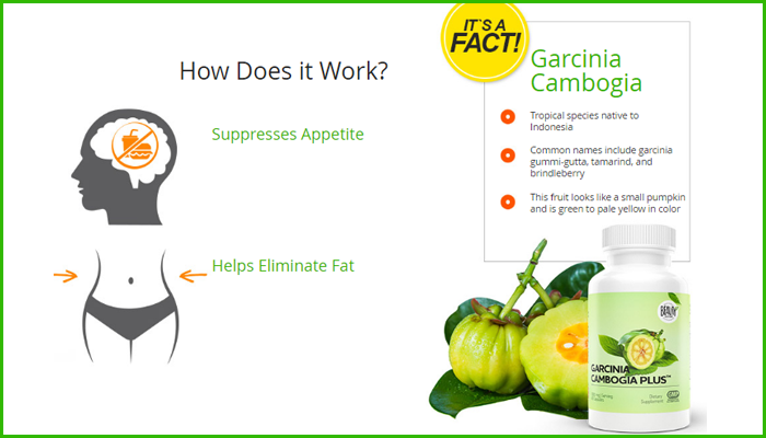 Garcinia Cambogia Plus reviews