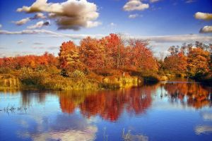 Pocono Outdoors Fall Foliage Report #2 October 5, 2020