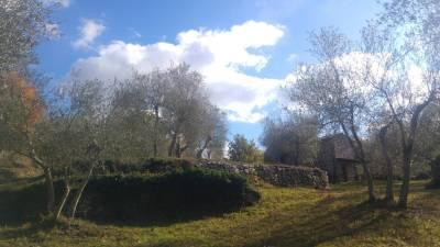 18. Casa Olivi retro