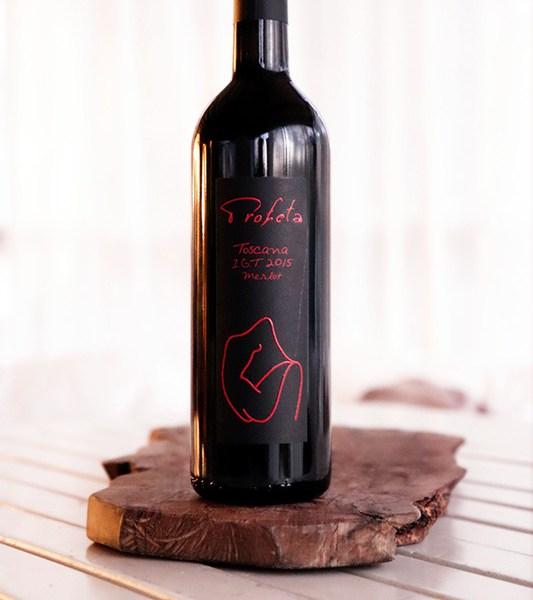 red Wine PROFETA Costa Toscana Merlot IGT