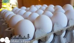 domaca jaja kamp pod ostrog
