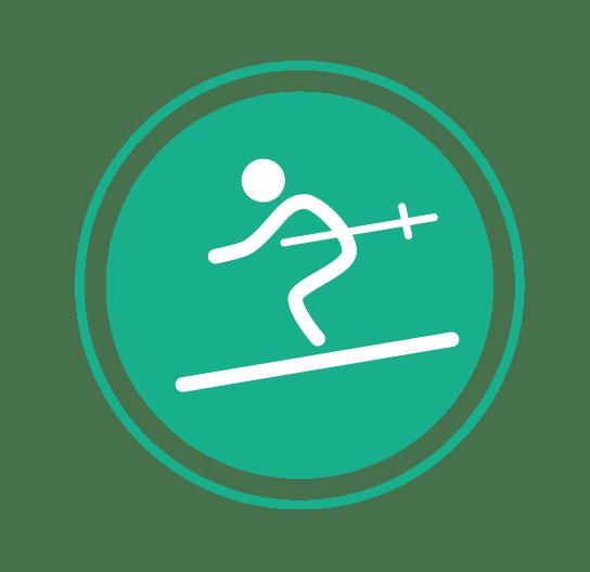 Ski Icon Easy