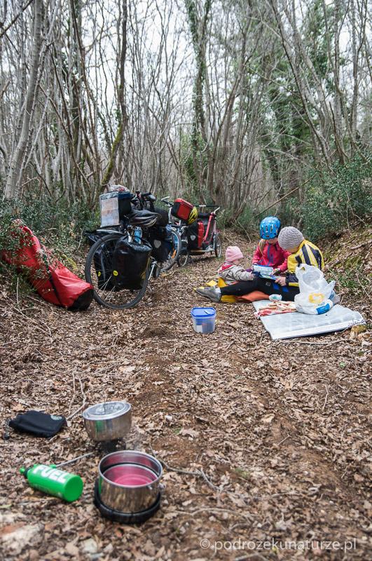 Odpoczynek i piknik w lesie