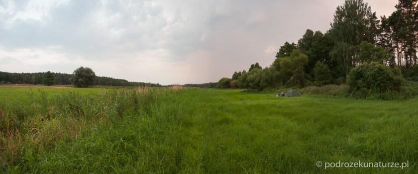 Zatopieni w bezkresie łąk