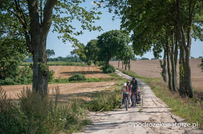 Rowerem po pojezierzu Chełmińskim i Brodnickim