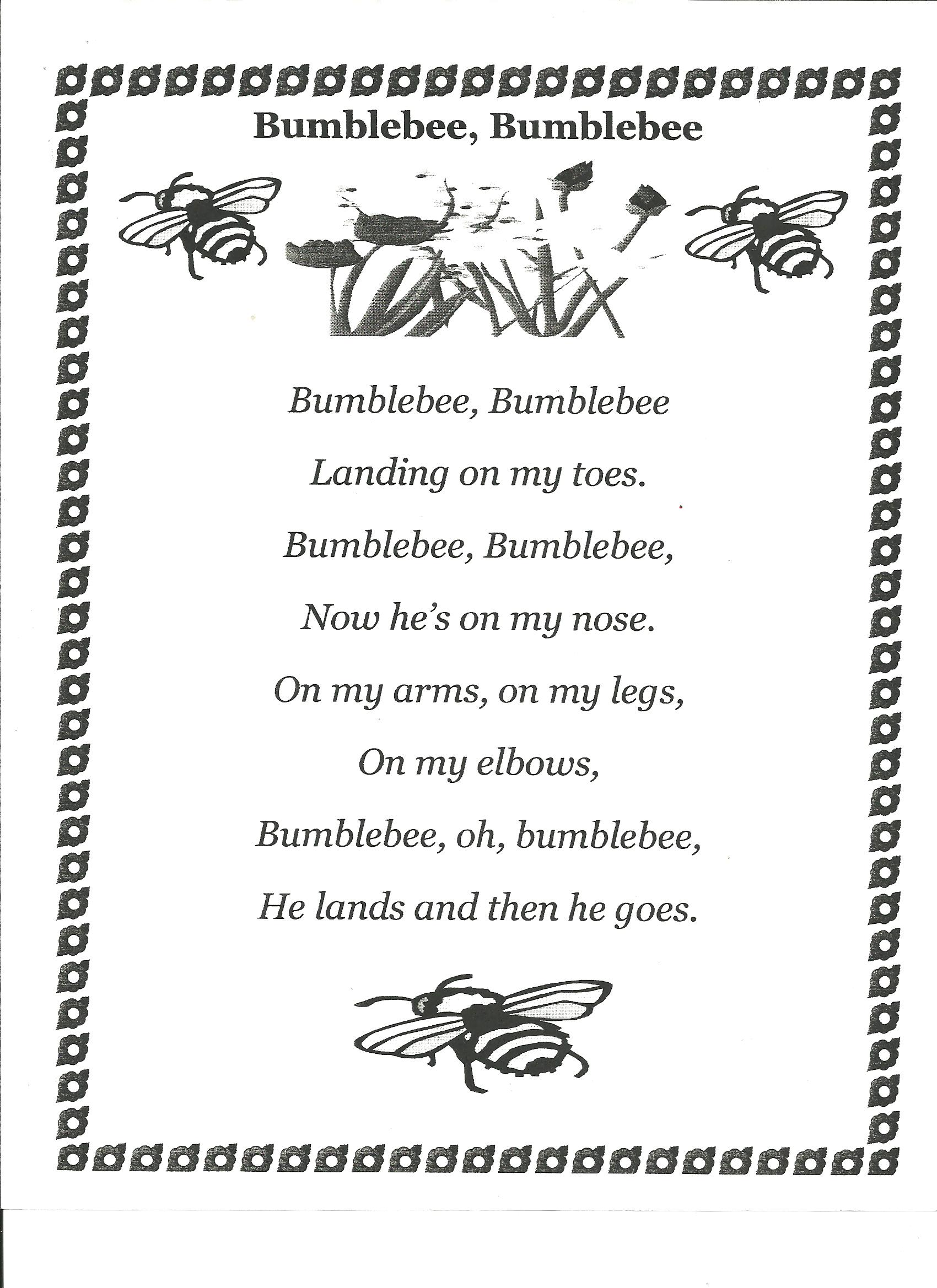 Insect Poems