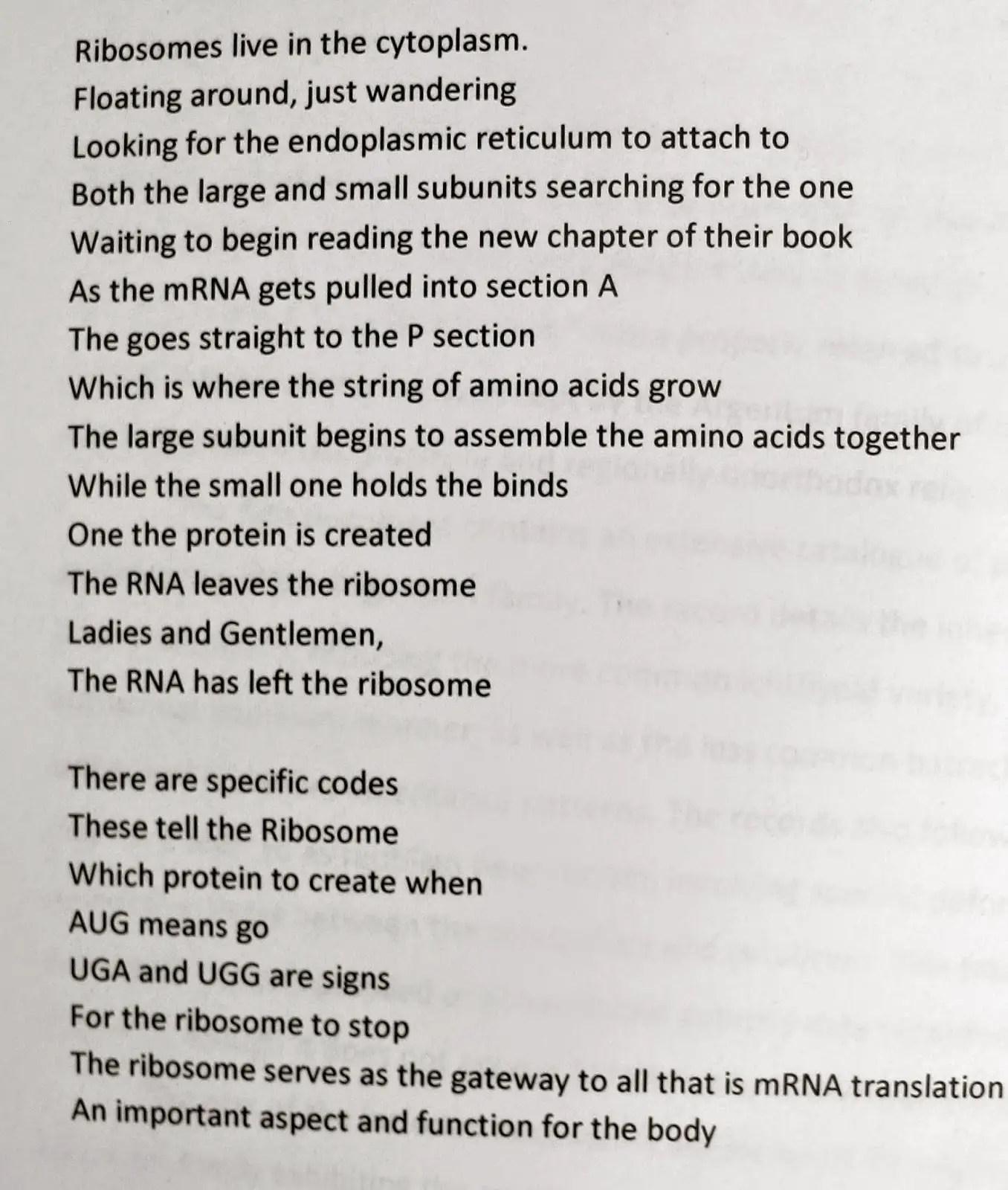 Meiosis Poems