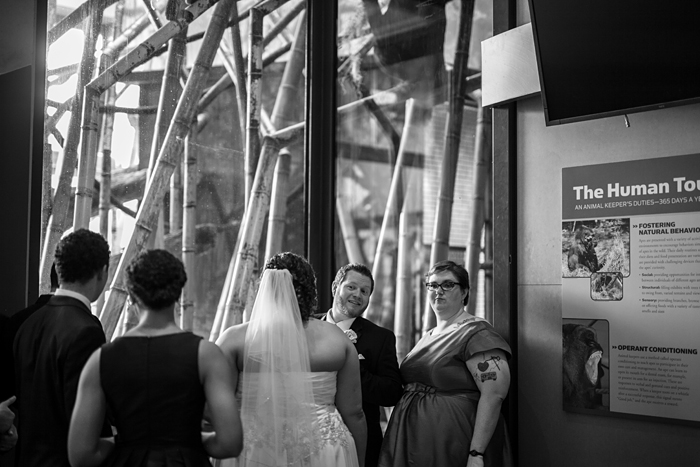 Lincoln Park Zoo Wedding Reception